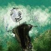 Colors Fly