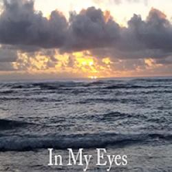 In My Eyes sung by Steve Davis