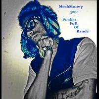 MeshMoney - Pocket Full Of Bands