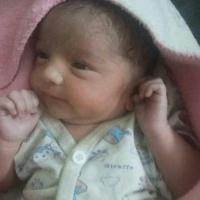 Sehajpreet Singh - , ,