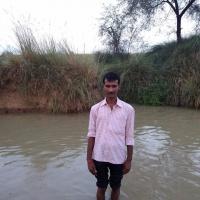 Sany Parsad - , ,