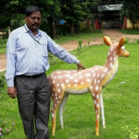 Kishore Sharma - Ranchi, Jharkhand, India