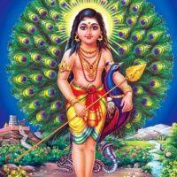 Subramanyena Rakshitoham Suddha Dhanyasi Raaga Adi Taala Kriti
