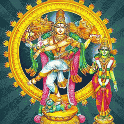 Thillana : Hamsanandi Raaga : Adi Taala : Padmanabhadasa : Thillana sung by Krishnaprasad K V