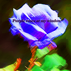 Purple roses at my window sung by Samantha Eagleson