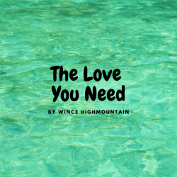 The Love You Need sung by WIncent Högberg