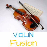 Karnatic Violin Fusion